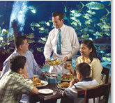 Great Restaurants in Naples Florida Area - Dinner in Southwest Florida